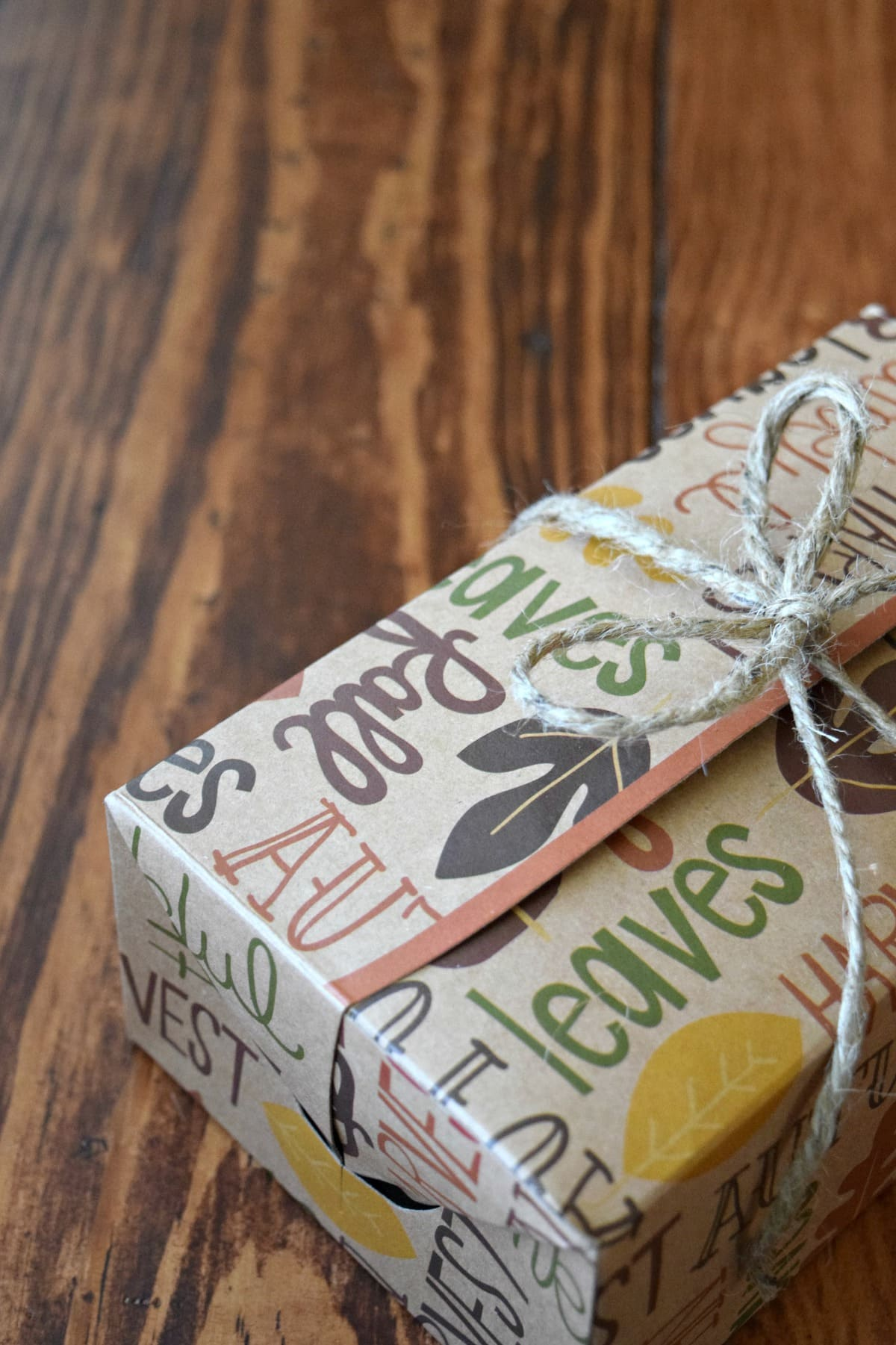 Fall Treat Boxes for Your Neighbors