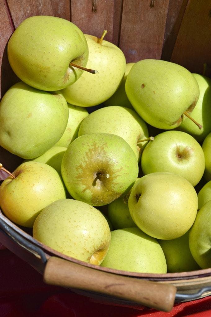 Sky Top Apple Orchard – Flat Rock, NC