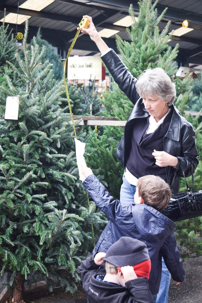 Christmas Tree Learning Activities for Kids