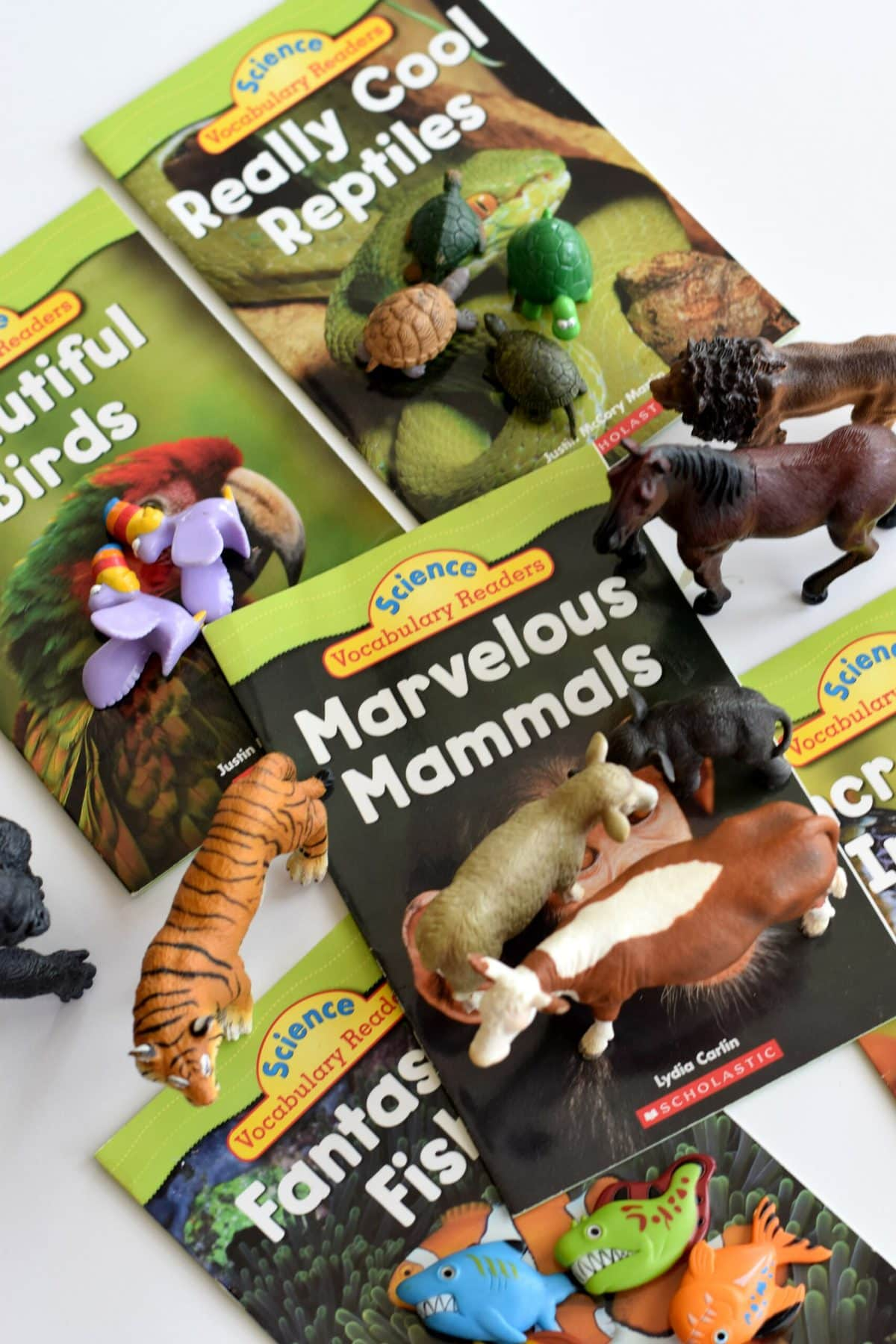 Animal Sort - Science Activity