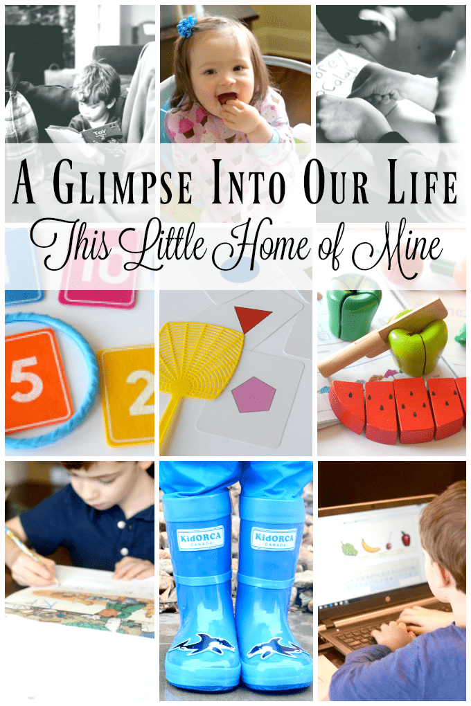 A Glimpse Into Our Life: February & March
