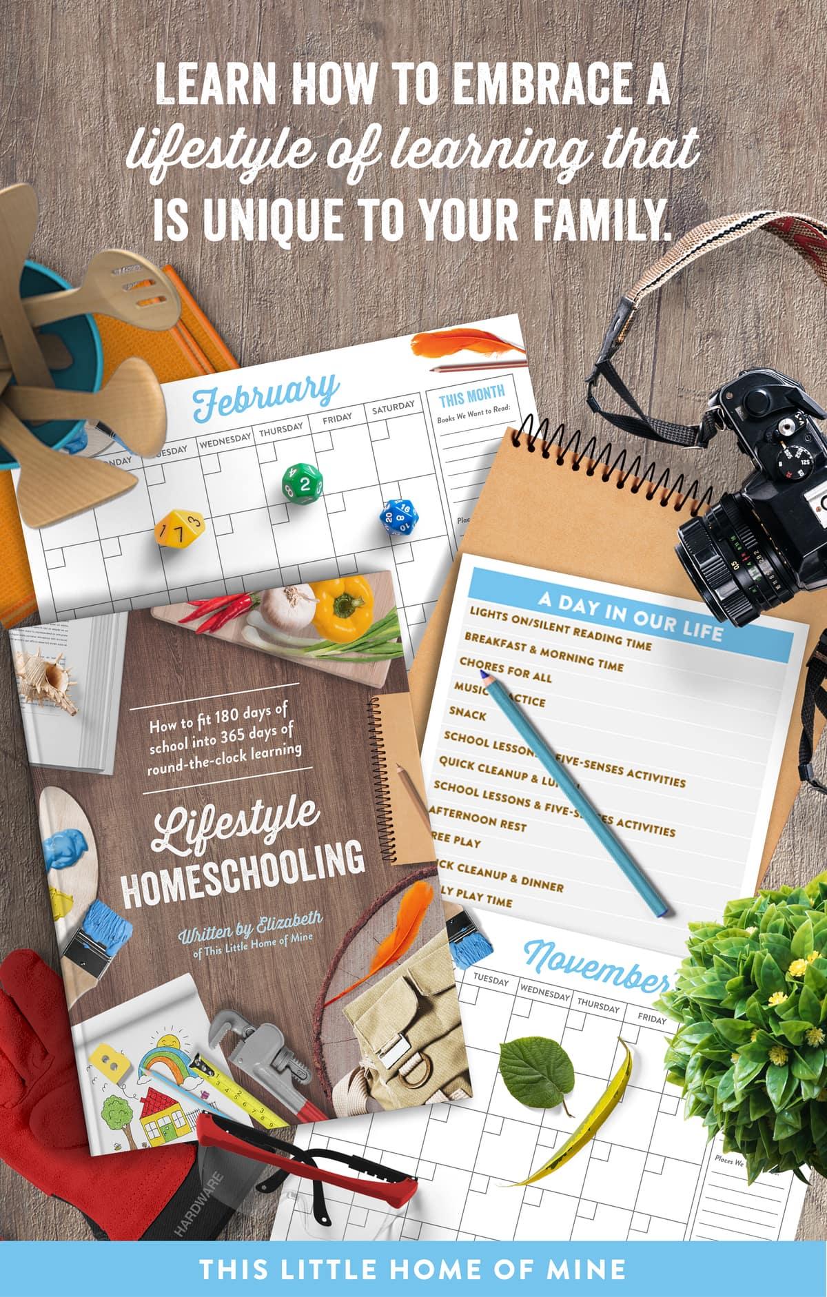 Lifestyle Homeschooling eBook