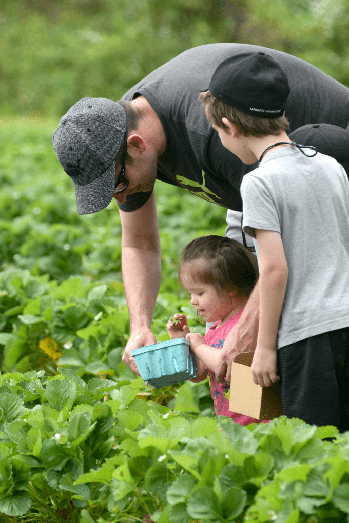 North Carolina Field Trip: Wise Acres Organic Farm - Indian Trail, NC